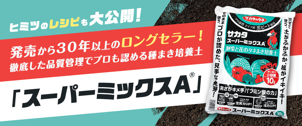 ヒミツのレシピも大公開!発売から30年以上のロングセラー!徹底した品質管理でプロも認める種まき培養土「スーパーミックスA」